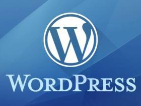 杨泽业:如何删除wordpress中的历史版本